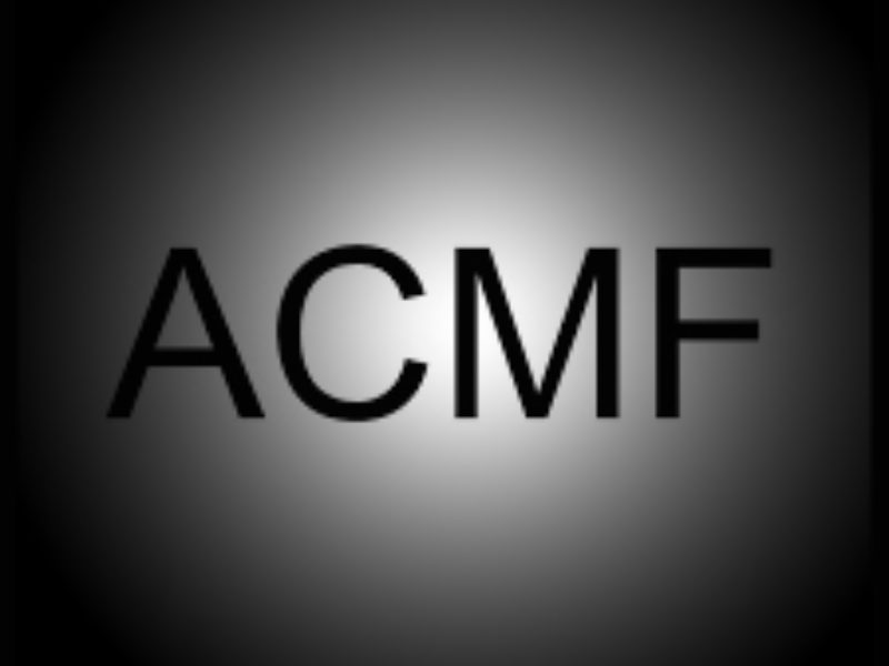 ACMF Association of Film Music Composers is born